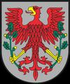 wróżka Choszczno