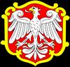 wróżka Koźmin Wielkopolski