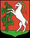 wróżka Lublin