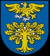 wróżka Sokołów Małopolski